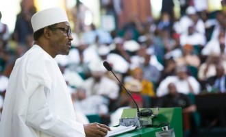Buhari's aide: Next 3 years will be eventful for Nigerian youth