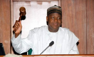 King Solomon's life as parable for Dogara and friends