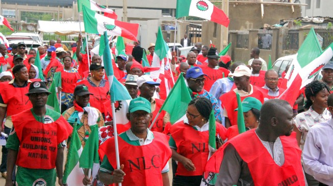 Labour shuts Kano… schools, banks, govt offices closed