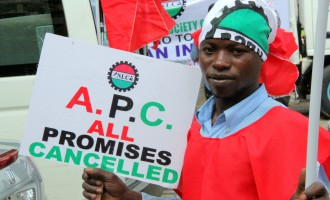 Low turnout at NLC HQ as workers shun protest