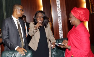 FG appoints parties to borrow $1bn in January