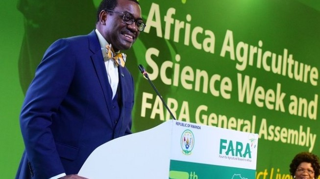 Adesina: Nigeria increased food production by 21m tonnes in 4 years