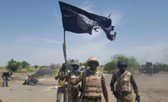 Army's 'tigers' kill 42 insurgents, rescues 80 civilians