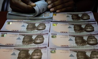 Naira hits year-high amid CBN's $210m intervention