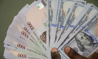 Naira appreciates against dollar, trades at N364/$1