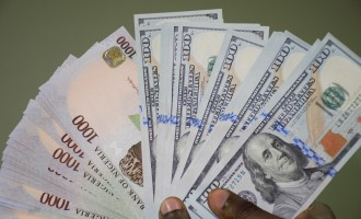 Stability in exchange rate 'will lead' to appreciation of naira