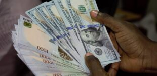 CBN extends interest rate cut on intervention facilities by one year