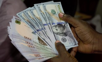 Naira stable at 454/$ as CBN asks BDCs to sell for 385/$1