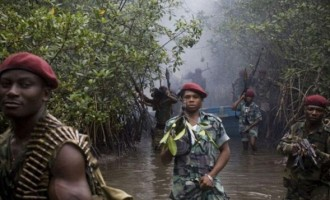 Come out of the creeks and embrace amnesty, FG tells militants