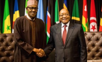 In 2016, Nigeria's economy will grow faster than South Africa's, IMF projects