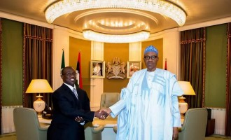 Buharimust stop NNPC digging our grave