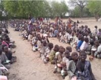 Starvation: Nigeria's internally displaced persons as President Buhari's Frankenstein monster