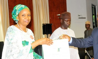 CLOSE-UP: Hadiza Bala-Usman, BBOG campaigner, 'daughter of poor lecturer', first female MD of NPA