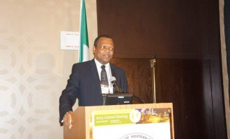 Nigeria's economic recession may be long and deep, says Peterside
