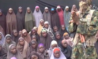 Chibok girls: Buhari invited UN because other options failed, says Adesina