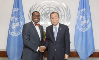Ban Ki-moon appoints Adesina to fight malnutrition