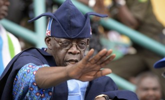 Oyegun: Asiwaju is our leader… I cannot speak evil against him