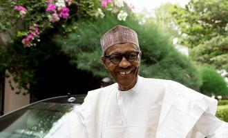 Managing economic chaos: Bullish Buhari and Soludo Solution?