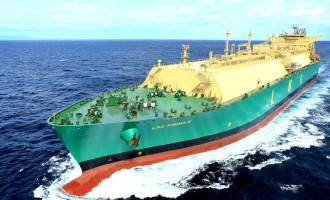 N'assembly accused of trying to amend NLNG Act 'to pave way for sale'