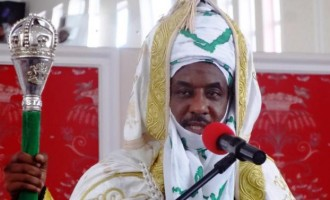 Garba Shehu: Sanusi discussing issues he has no facts on