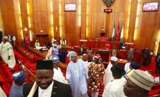 Senate 'responds' to economic recession by passing 8 'strategic' bills