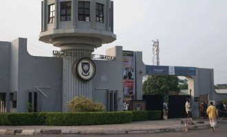 'They weren't involved in exam malpractices' — ASUU speaks on arrest of its members in UI