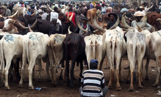 Ruga settlement agenda and the undemocratic annotations from the presidency