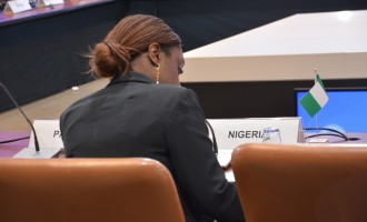 Adeosun: Nigeria's debt not too high, but revenue just too low
