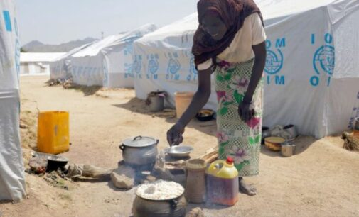 'Funding drying up' — WFP warns of food ration cuts for north-east IDPs