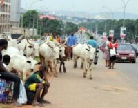 Fulani herdsmen blame attack on foreigners