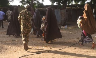 ALERT: 'There're Chibok girls in Sambisa — and the air force must not bomb them'