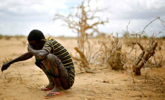 Nigeria faces 'credible risk of famine' in 2017