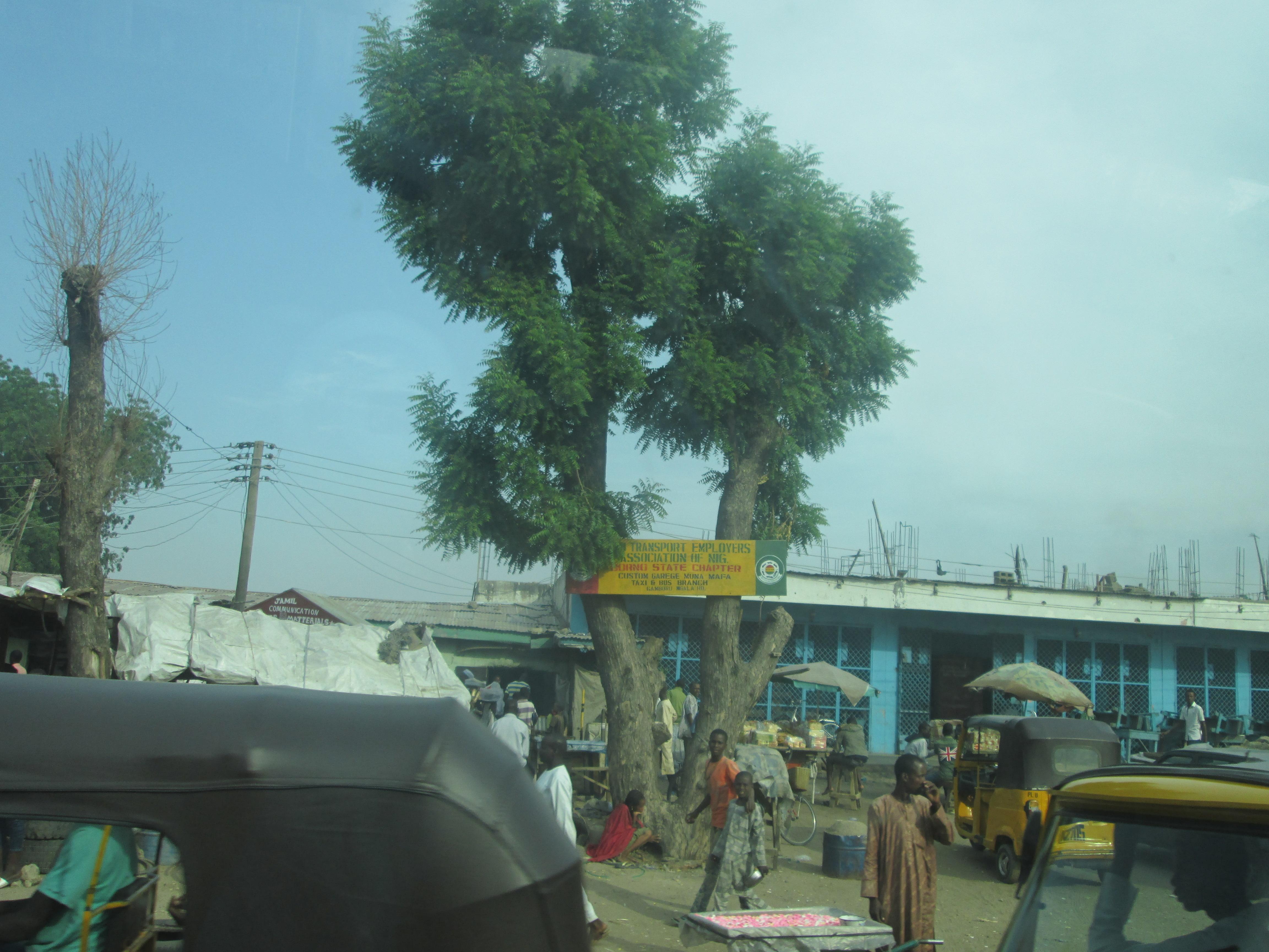 Borno 1