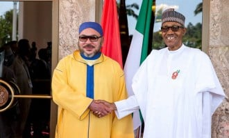40 NGOs seek cancellation of $20 billion Nigeria-Morocco gas pipeline project