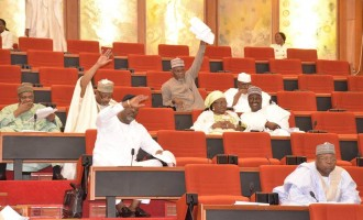 Senate proposes extra 14 days for conduct of presidential rerun elections
