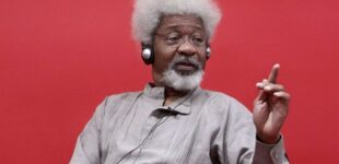 Soyinka denounces video asking Igbo to leave Yorubaland