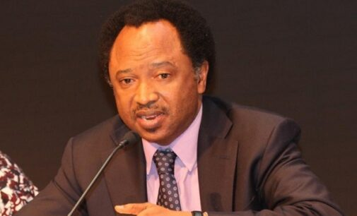 Shehu Sani to Buhari: Delegate Gowon, Abdulsalami to resolve crisis in the north