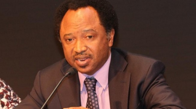 Shehu Sani describes Babangida's statement as 'bullet shot with flowers'