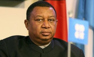 Nigeria's Barkindo gets re-elected as OPEC secretary general
