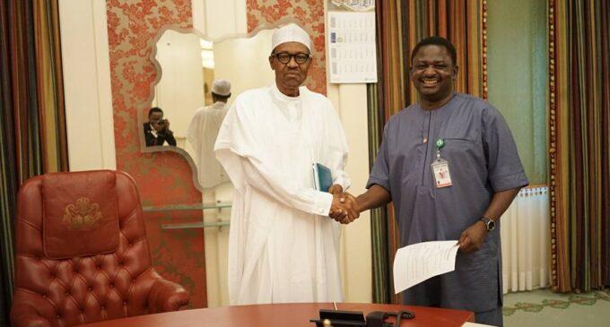 Buhari and Femi Adesina – what are you doing to Nigeria's future?