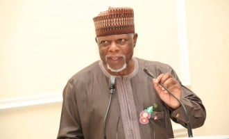 HURRAY! Customs launches e-auction platform to sell seized goods