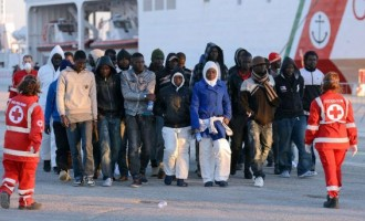 International migrants reach 258m, says UN