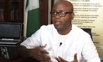 We need to delink our economic fortunes from the fate of oil prices, says Adio