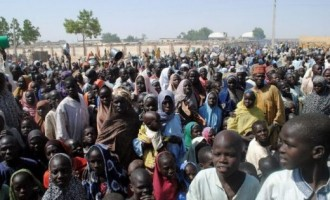 UNICEF: Cholera victims in Borno IDP camps being kept away from treatment