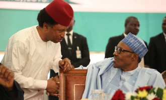 Shehu Sani advises Buhari to withdraw 'lazy youth' comment and apologise