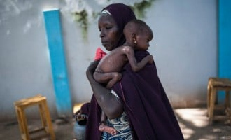 Malnutrition 'kills 240 displaced children' in Borno