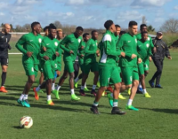 Mikel, Ighalo, Moses return to Eagles squad for game against Cameroon
