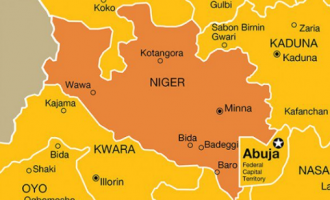 14 killed in Niger flood