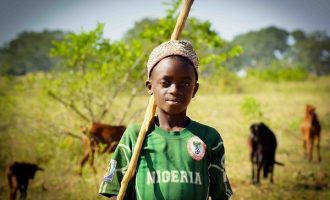 We must all be Fulani