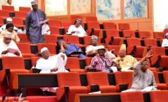 'Fuel theft': Senate tells NNPC to go beyond sacking its officials